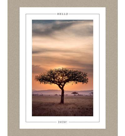 Hello 2020 Portrait Holiday Card