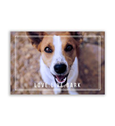 Bark Canvas Print And Stretch Rectangle