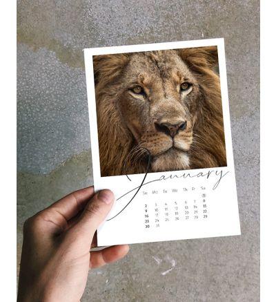 Retro Calendar Calligraphy 2022