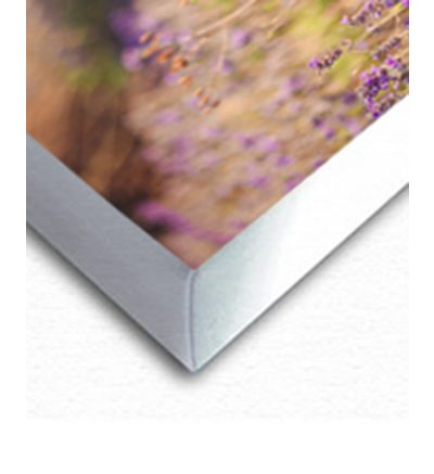 Single Image With White Border Canvas Print And Stretch