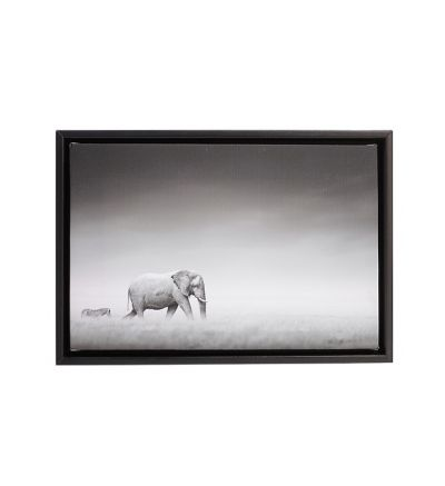 Single Image Black Border Framed Canvas