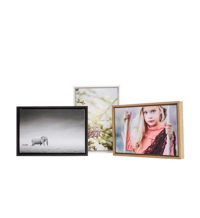 Image Wrap Border Framed Canvas