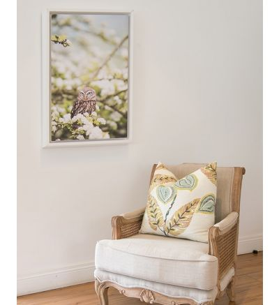 Single Image With White Border Framed Canvas