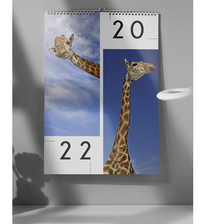 Calendar 6 Pages - Opposites 2022
