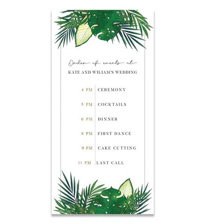 Programmes - DL - Tropical - Set of 6