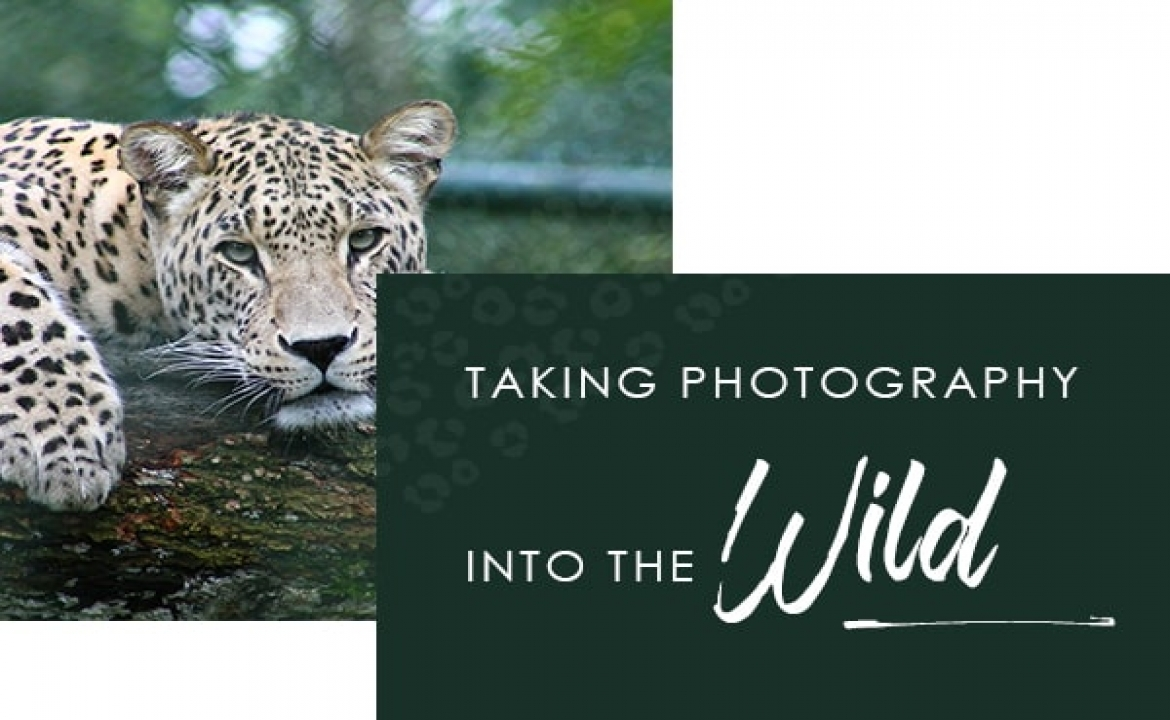 Taking Photography into the WIld