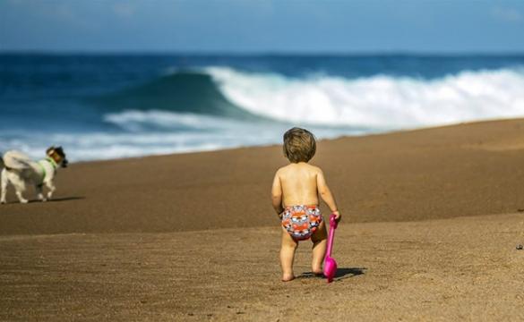 Image Of The Week - Beach bum