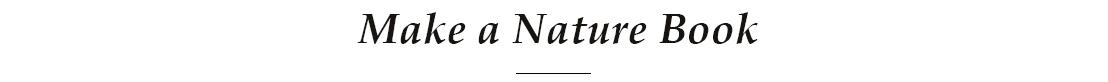 Make a Nature Book