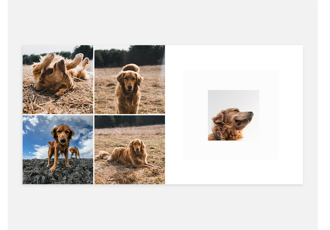 Photo Book Layout Ideas